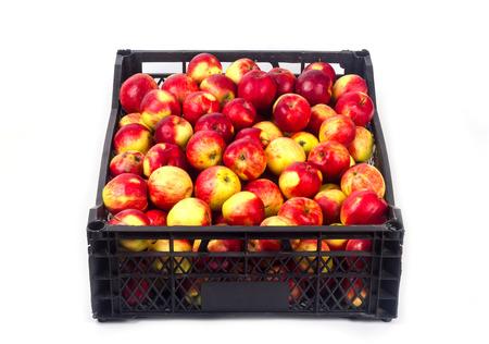 Crate avec des pommes rouges sur un fond blanc Banque d'images - 65100758