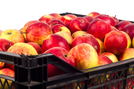 Crate avec des pommes rouges sur un fond blanc Banque d'images - 65100762