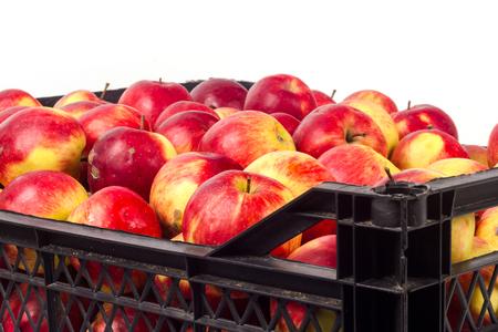 Crate avec des pommes rouges sur un fond blanc Banque d'images - 65100773