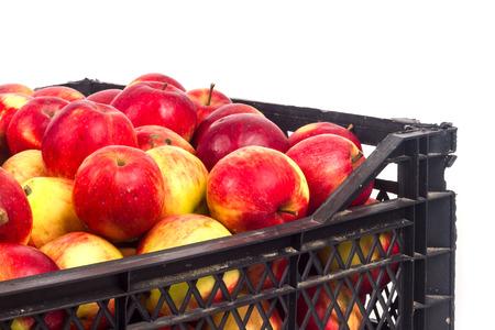 Crate avec des pommes rouges sur un fond blanc Banque d'images - 65101167