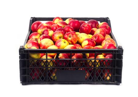 Crate avec des pommes rouges sur un fond blanc Banque d'images - 65101171