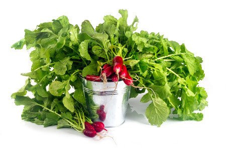 Long radishes with leaves in a bucket on a white background