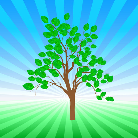 Young vector tree with bright green leaves and rays in background Vector
