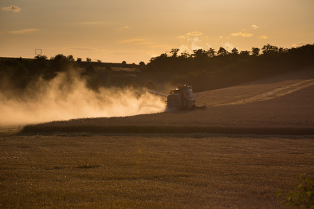 widespread: Combine harvested grain at sunset. Simple monochrome image. Widespread Dust