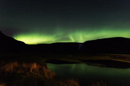 arctic zone: Northern lights, aurora borealis, Skogar, Iceland