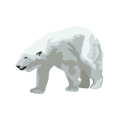 Polar bear, isolated vector illustration Vettoriali