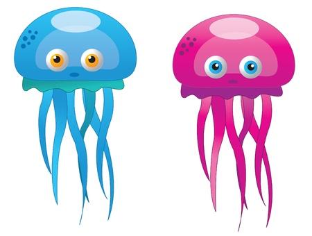 squids: octopus