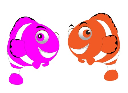 clown fish pair  Vector