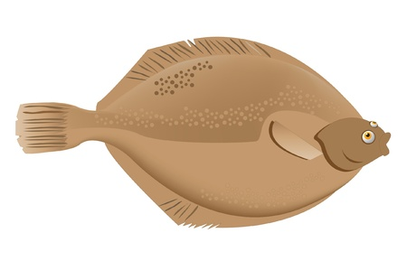 sand dab fish