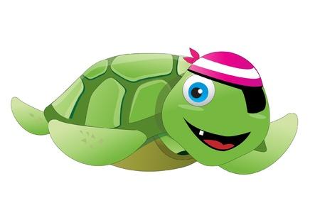 green sea turtle: pirate turtle