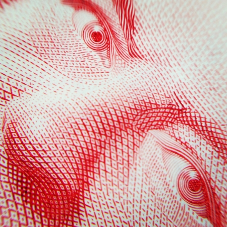 eye: Macro shot of Canadian dollar