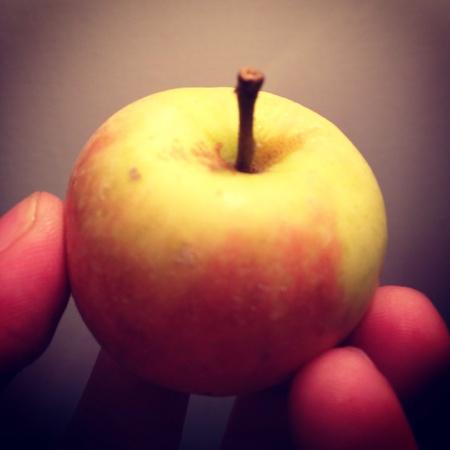 Baby apple Stock Photo