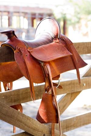 montage de cheval de selle brune