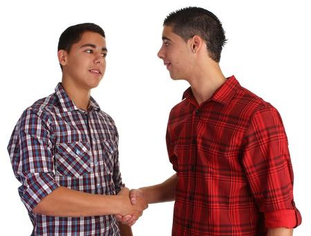 friendly handshake Stock Photo - 10341518