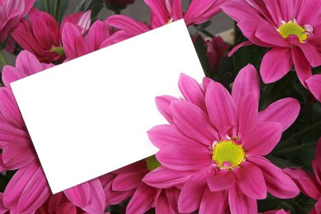 between: gift card between flowers Stock Photo