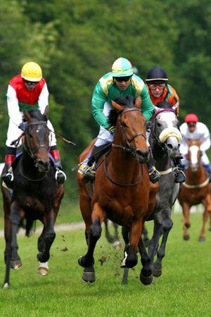 corse di cavalli: Cavalli in corsa-corso