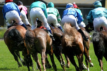 horses at race-course Stock Photo
