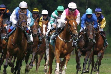 horse-racing Stock Photo - 1254708