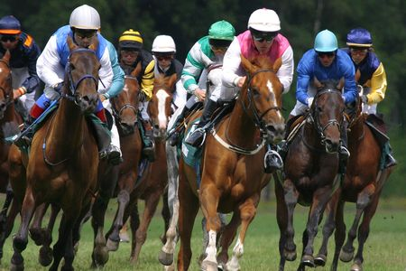 horse competition: horse-racing Stock Photo