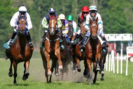 horse competition: horse racing Stock Photo