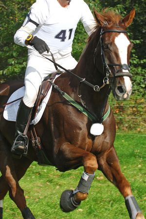 eventing: eventing Stock Photo