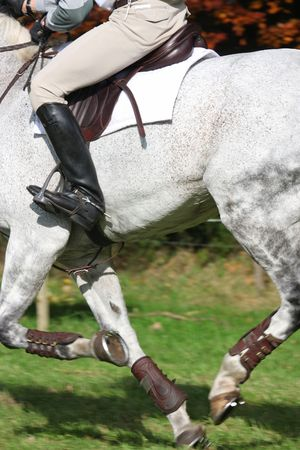 eventing: horse and rider following eventing track Stock Photo