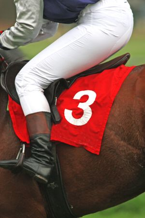 racecourse: horse and jockey at race-course, up to the finish Stock Photo