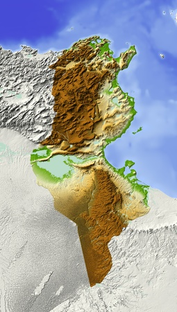 bathymetry: Tunisia. Shaded relief map. Surrounding territory greyed out. Colored according to elevation. Includes clip path for the state area. Projection: Mercator Extents: 6.512.529.538.3 Data source: NASA