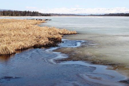 frozen lake: Melting ice on a frozen lake in Alaska on a warm spring day