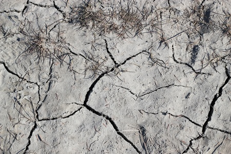 Closeup of dry cracked earth