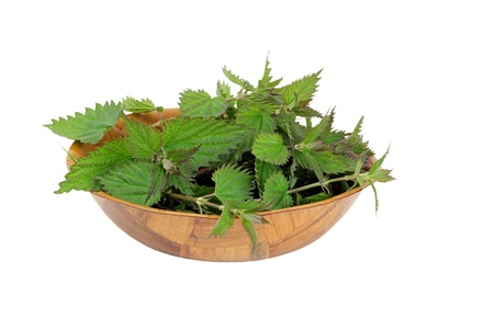 Bowl of nettles ready to cook, isolated on white