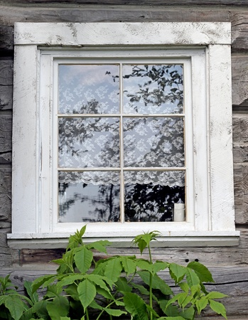 Old fashioned window with lace curtains  Stock Photo