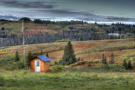 homesteads: Small shed near a power pole in rural Alaska with scattered homesteads in the background with the beginnings of fall colors.