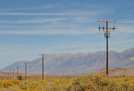 Power poles in the desert of the Eastern Sierras with blooming rabbitbrush on a sunny day with bright blue skies. photo