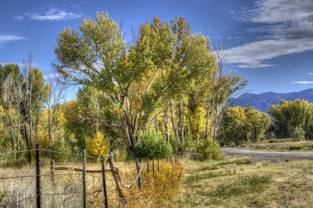 Fencing from an old ranch near Bishop, California in the Eastern Sierras on a sunny fall day with bright blue skies. photo