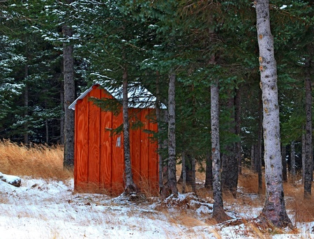 An Alaskan outhouse with the first snow falling in a spruce forest