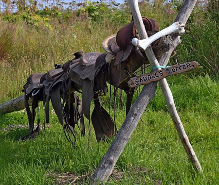 Old leather saddles on a rustic wooden stand with a for sale sign.