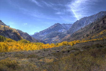 sierras: Golden aspen in a canyon in the Eastern Sierras with scenic mountains and interesting clouds.