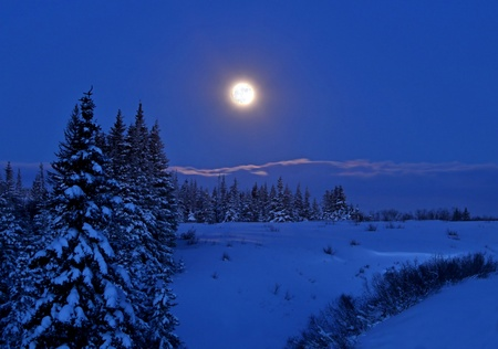 Full moon rising over a winter landscape in Alaska at night with spruce trees and snow. Stock Photo
