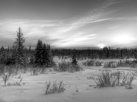 Snowy Alaskan landscape at sunset in black and white