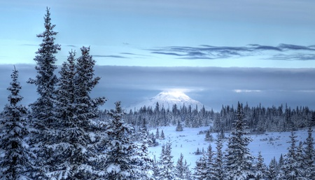 Glowing Alaskan volcano (Mt. Redoubt) in winter with clouds and spruce trees in the foreground.