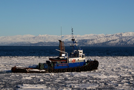 tug boat: Blue tug boat pushing through ice in the Kachemak bay in Alaska on a sunny winter day with a bright blue sky.