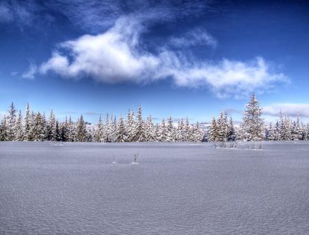 Amplia extensión de la nieve en las zonas rurales de Alaska en un día soleado con nubes y un cielo azul brillante. Foto de archivo - 12539334