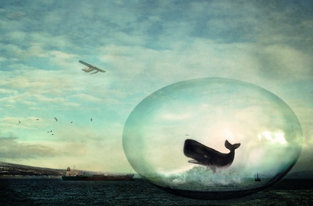Fantasy scene with a sperm whale in a glass egg surrounded by an oil tanker, a jack up drilling rig, and an airplane with blue sky and clouds.