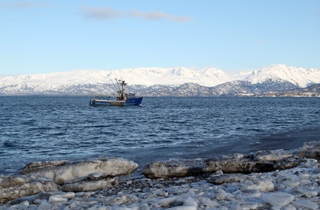 Fishing trawler heading out to sea in the Kachemak bay near Homer Alaska in winter with large ice chunks on the beach and snowy mountains in the background. photo