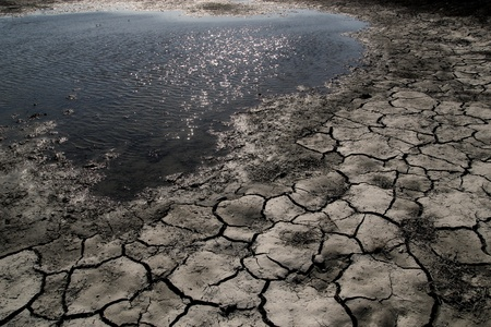 Cracked earth along side water of a drying pond during a drought. Stock Photo