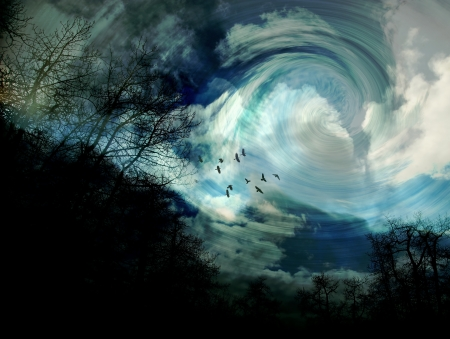 surrealistic: Surrealistic scene with trees, birds, and swirling clouds Stock Photo