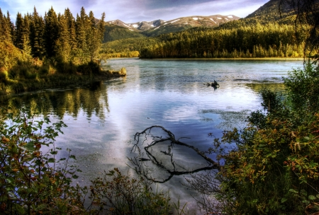 The Kenai River in Alaska near Cooper Landing in fall in soft evening light with reflections.