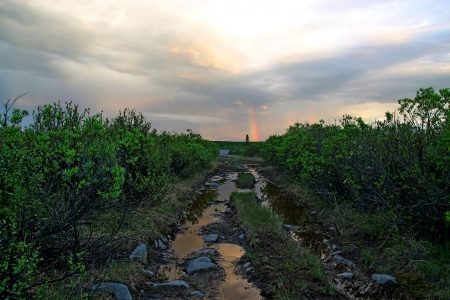 Muddy road near the Denali Hwy in Alaska in summer after a rain storm with a rainbow in the background and storm clouds. photo