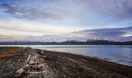 homer: Beach at the end of the spit in Homer Alaska in evening light.